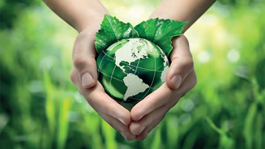 Regolamento ambientale
